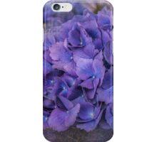 Just Purple! iPhone Case/Skin