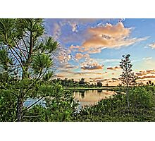 Florida's Natural Beauty 2  Photographic Print