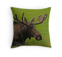 A Moose Relaxing In A Meadow Throw Pillow