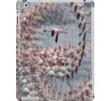 CHANGE YOUR PERSPECTIVE AND SOAR! iPad Case/Skin