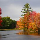Fall Along the Little Androscoggin River - Please View Large by Judith Hayes