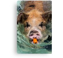 Poor Substitute for a Snorkel Canvas Print
