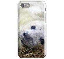 Playful grey seal pup iPhone Case/Skin