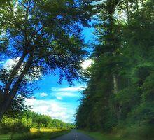 Blue Ridge Parkway No. 1 by Anthony M. Davis