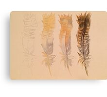 Feather demo Canvas Print