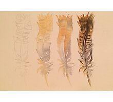Feather demo Photographic Print