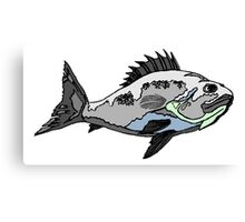 Spine Fish Canvas Print