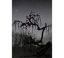Winged Elf In a Tree Photographic Print