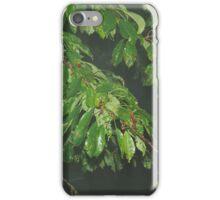 Blätter im Nebel iPhone Case/Skin