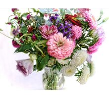 Septemer Bouquet Photographic Print