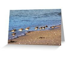 Beachcombers 2 – Sandpipers on the Beach  Greeting Card