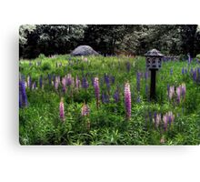 Birdhouse in the Lupine Canvas Print
