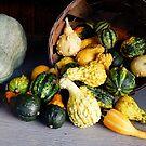 Basket of Gourds by Hope Ledebur