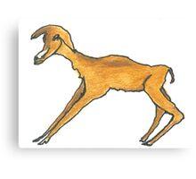 blesbok antelope Canvas Print