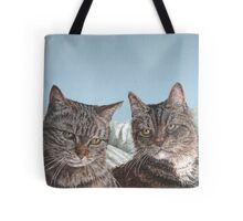 Tabby Cats Tote Bag