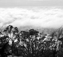 Cloudy Overview by Lozzar Landscape