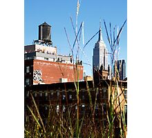 Empire State Building from the Highline  Photographic Print