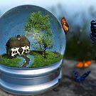 Butterfly Globe by Hannah Joy Patterson