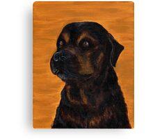 Rottie Bullmastiff Mix Canvas Print
