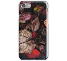Collage Of Autumn Red iPhone Case/Skin