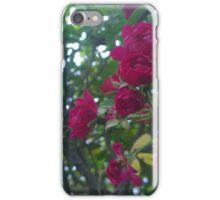 .Autumn Blooms. iPhone Case/Skin