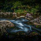 Ngamuwahine river by Paul Mercer
