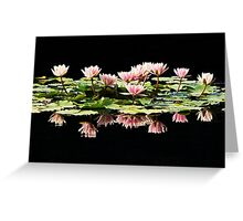 Group of pink water lilies Greeting Card