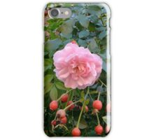The Last Rose iPhone Case/Skin
