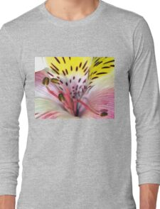 Flower fireworks Long Sleeve T-Shirt