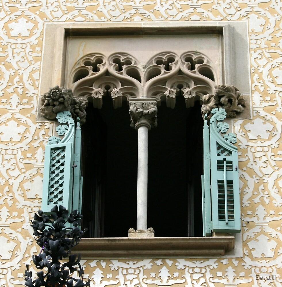 A Window in Barcelona by Segalili