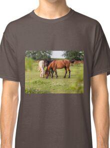 Golden hour horses Classic T-Shirt