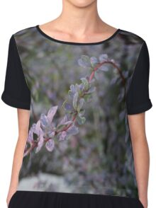 Flower in the Court Yard Chiffon Top