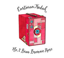 Kodak Beau Box Brownie Rose  by Livwan