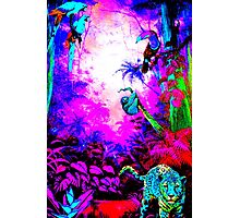 Story Book Jungle Photographic Print