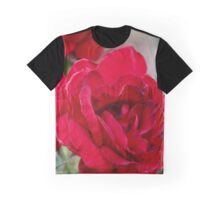 Backyard red roses Graphic T-Shirt