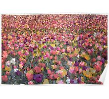 Meshed Up Colourful Summer Tulip Field Poster