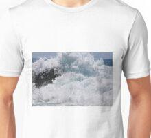 IMG_1885_1 Unisex T-Shirt