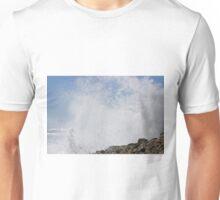 IMG_1900_1 Unisex T-Shirt