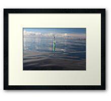 wobbler on the fishing line Framed Print