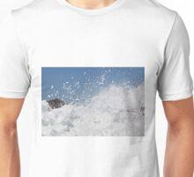 IMG_1899_1 Unisex T-Shirt