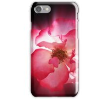 clear red petals iPhone Case/Skin