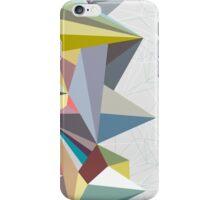 Colorflash iPhone Case/Skin