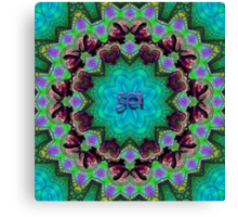 Michael Kang- String Cheese Incident Canvas Print