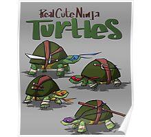 Real cute ninja turtles Poster
