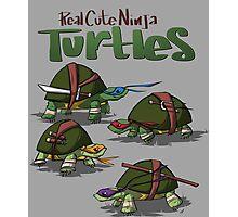 Real cute ninja turtles Photographic Print