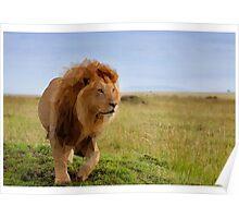 Geometric Lion Landscape Poster