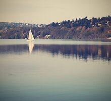 Vintage lake by MartinCapek