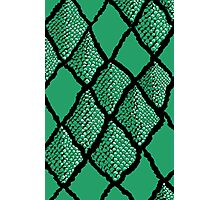 Snake Skin Photographic Print