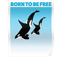 MOTHER AND CHILD WHITE - ORCA Poster