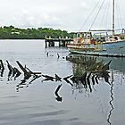 Wooden Boats - Macquarie Harbour, Strahan by Marilyn Harris